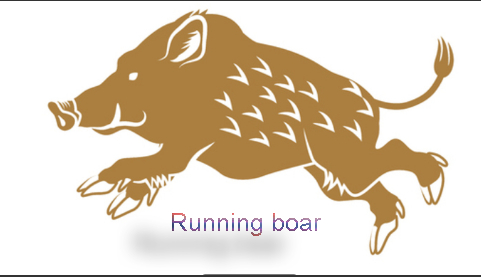Different levels of forex traders, running boar